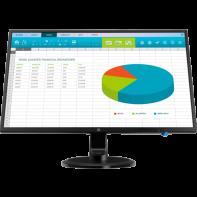 HP N246v 23.8-inch LED Monitor